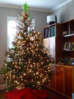 Lr tree