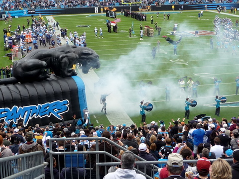 Panthers game (6)